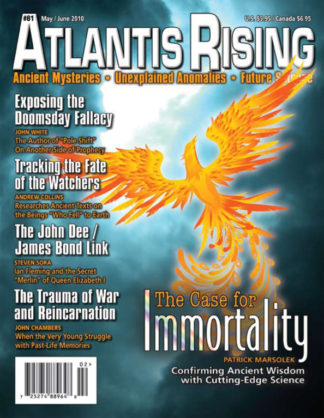 Cover 81